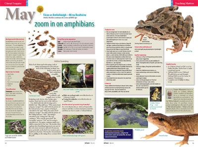 NGR May 13 05 Zoom in on amphibians