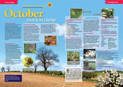 NGR Oct 15 10 Zoom in on hedges